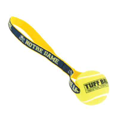 Collegiate Pet Toss Toy